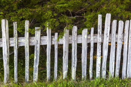 historic fence at Fort Ross State Historic Park photo