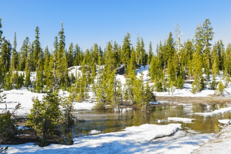 treeline: snow on Mount Lassen in the national park Stock Photo