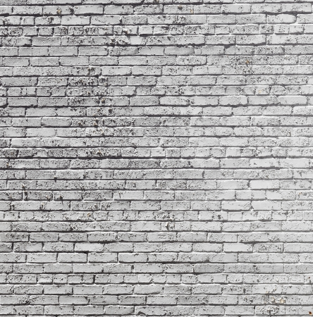 pattern of old historic brick wall in white photo