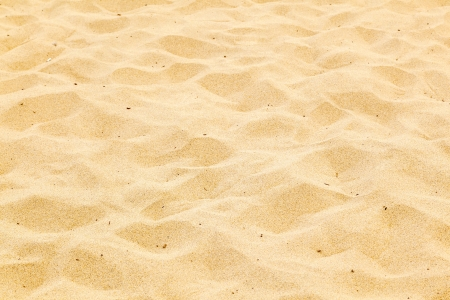 pattern of sandy beach in the morning with footsteps photo