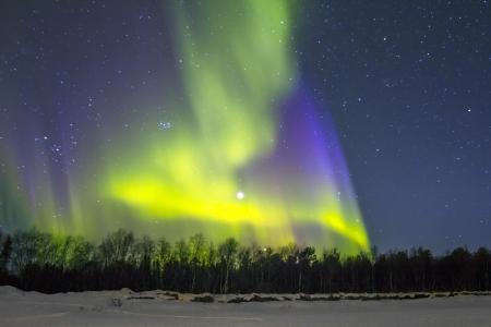 Финляндия: Северное сияние (Aurora Borealis) по заснеженной местности.