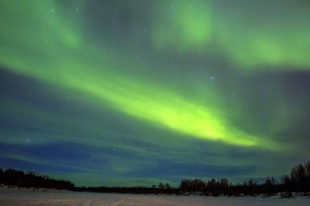 Northern Lights (Aurora borealis) over snowscape. photo