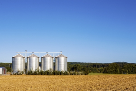 golden corn field in harvest with silo Stock Photo - 14817801