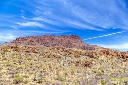beautiful mountain desert landscape with cacti near Tuscon, Arizona photo