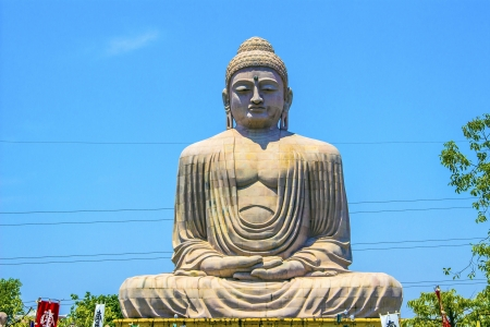 banian tree: Giant Buddha in Bodhgaya, Bihar, India.