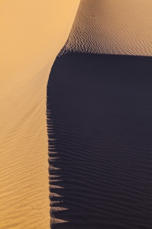 beautiful sand dune in sunrise in the desert photo