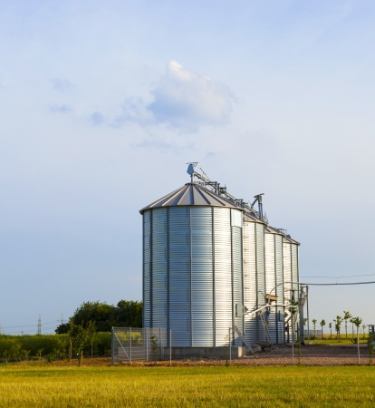 four silver silos in corn field with clouds photo