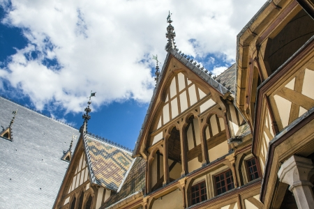 chien: famous hospice in Beaune, France