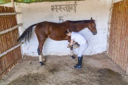 woman with her horse cleaning the hoof photo