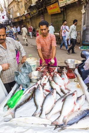 NEW DELHI, INDIA - OCTOBER 17: Selling fish on fish market in New Delhi, India on  October,16 2012. Seafood is one of the main source of food for local people. Stock Photo - 16348907