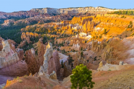 beautiful landscape in Bryce Canyon with magnificent Stone formation like Amphitheater, temples, figures in afternoon ligh photo
