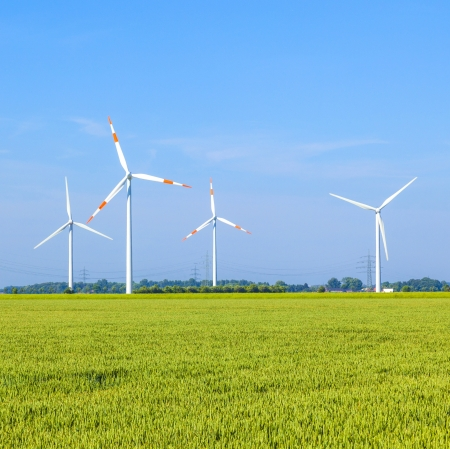 Wind energy wowers standing in the field in spring photo