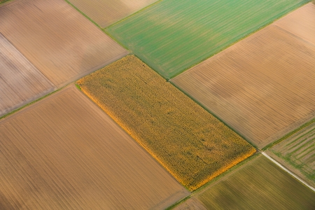acre: rural landscape with acre from hot air balloon