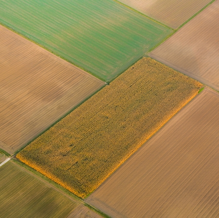 rural landscape with acre from hot air balloon photo