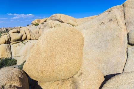 Jumbo Rocks, Joshua Tree National Park, Joshua Tree, California photo