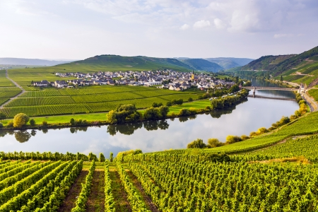 famous Moselle Sinuosity in Trittenheim, germany photo