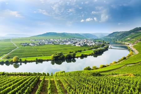 berühmten Moselle sinuosity in Trittenheim, Deutschland