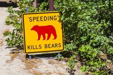 kills: Danger sign, Speeding kills Bears in Yosemite National Park