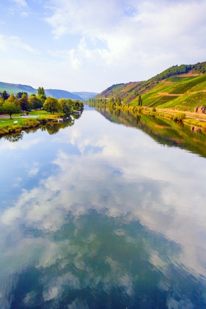 mosel: vineyards at the hills of the romantic river Moselle edge in summer with fresh grapes and reflection in the river