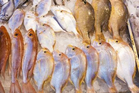 whole fresh fishes are offered in the fish market in asia Stock Photo - 17061247