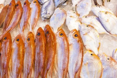 whole fresh fishes are offered in the fish market in asia Stock Photo - 17061246