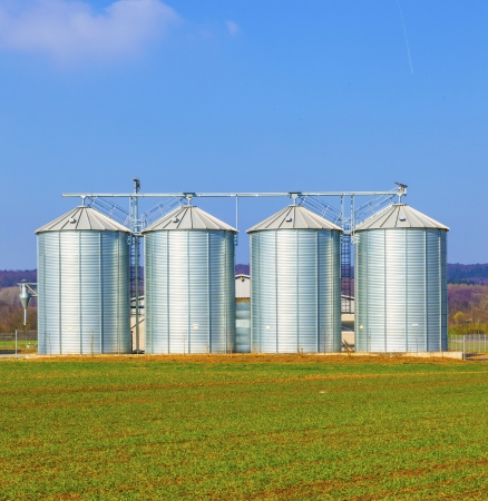 storage bin: four silver silos in field under bright sky Stock Photo