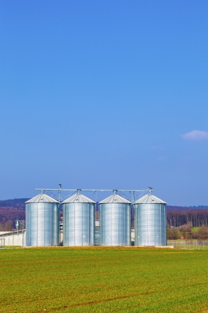 four silver silos in field under bright sky Stock Photo - 17186591