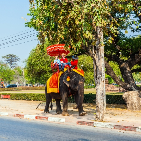 ajutthaya: tourists ride on an elephant in the Historical Park  in Ajutthaya, Thailand.