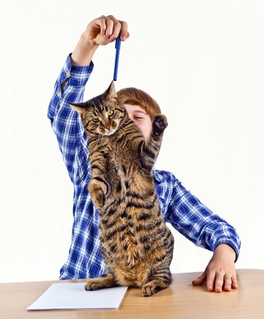 smart boy learning for school has a break and plays with his cat Stock Photo - 17793523
