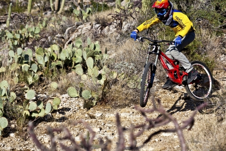 tuscon: TUSCON, USA - DEC 4: downhill bike rider on the trail on Dec 4,2011 in Tuscon, AZ, USA.  There are around 1,000 bicycle related deaths in the United States each year, 75 percent of which are due to head injuries.