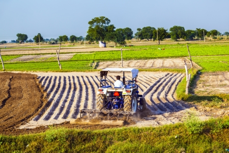 contributes: DAOLA, INDIA - OCT 25: tractor plows the field on October 25, 2013 in Daola, India. Although agriculture contributes only 21 percent of India's GDP,the rural areas are still home to some 72 percent of the Indians people.