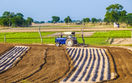 contributes: DAOLA, INDIA - OCT 25: tractor plows the field on October 25, 2013 in Daola, India. Although agriculture contributes only 21 percent of India's GDP,the rural areas are still home to some 72 percent of the Indians people. Editorial