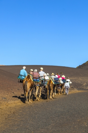 TIMANFAYA NATIONAL PARK, LANZAROTE, SPAIN - MARCH 28: Tourists ride on camels  guided by local people through the famous Timanfaya National Park on MARCH 28, 2013 in Lanzarote, Spain.