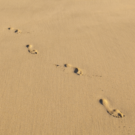 human footsteps at the sandy beautiful beach photo