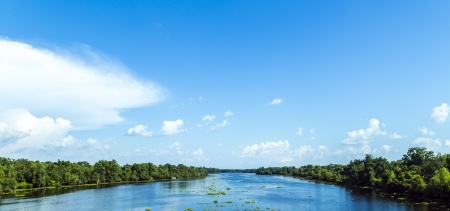 river bed: view to the river Missisippi with its wide river bed and untouched nature in Louisiana Stock Photo