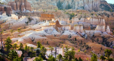 vastness: beautiful landscape in Bryce Canyon with magnificent Stone formation like Amphitheater, temples, figures in afternoon ligh