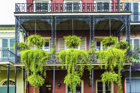 old New Orleans houses in french Quarter Editorial