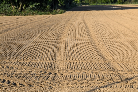 tire marks: freshly plowed field in autumn with marks of tire