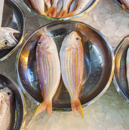 whole fresh fishes are offered in the fish market in asia Stock Photo - 23680664
