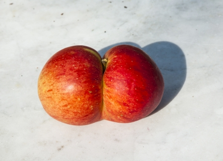 deformation: fresh apples with funny deformations like double egg Stock Photo