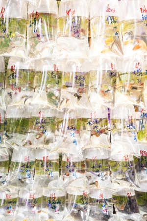 Bags of fishes for sale at a market photo