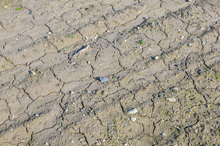infertile: detail of field with cracked wet earth
