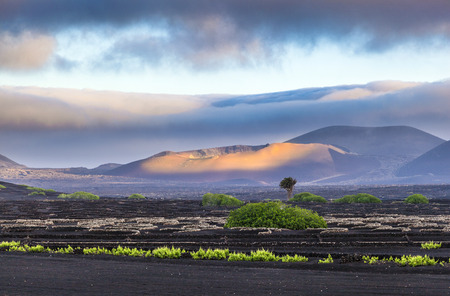 extinguished volcanoes in Timanfaya National Park, Lanzarote Reklamní fotografie