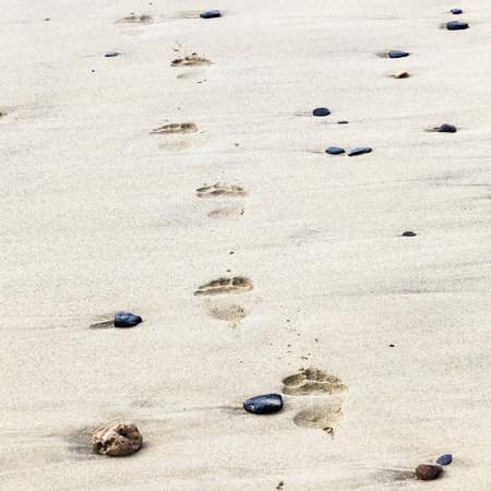 footprints on the beautiful sandy beach photo