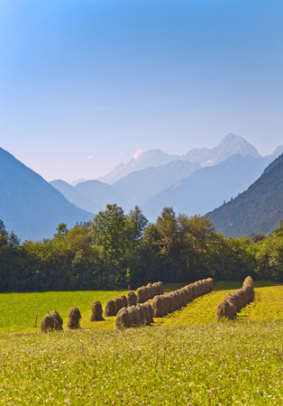 beautiful landscape in the tirolean Alps, good smelling grass and wonderful mountains photo