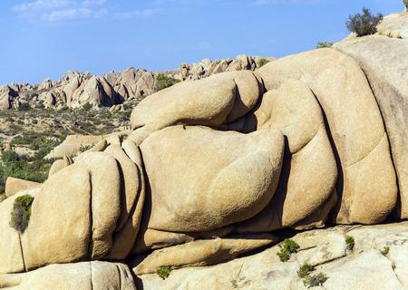 scenic rocks in Joshua Tree National Park  in Hidden valley photo