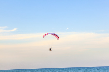 minimally: MIAMI, USA - JULY 26: Paraglider flying along the beach on July 26, 2010 in Miami, USA. In the USA powered paragliding is minimally regulated and requires no licence.
