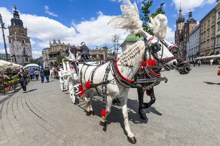 the coachman: KRAKOW, POLAND - MAY 4: Horse-drawn carriage at the Market Square, standardized the color, total length of no more than 7.0 m, can be harnessed to a max of two horses on May 4, 2014 in Krakow, Poland.