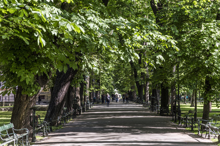 parc: parc Planty wit green trees in  Krakow, Poland Stock Photo