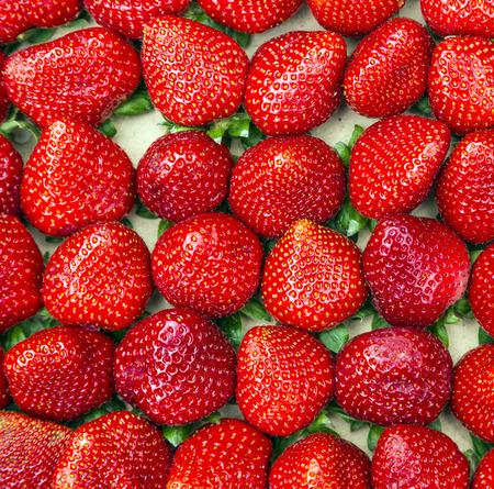 many Fresh red strawberries closeup background photo